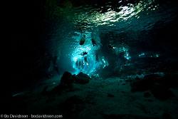 BD-101209-Cenotes-2895-Homo-sapiens.-Linnaeus.-1758-[Diver].jpg